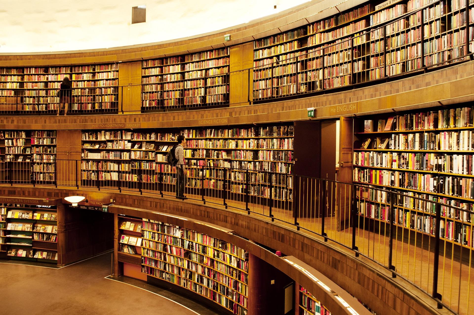 lecture et litterature